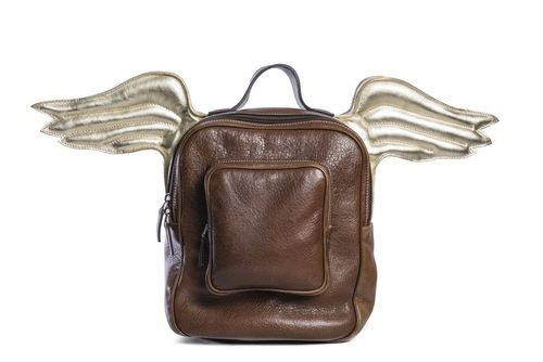 Backpack with wings